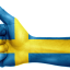 Sweden Uses Cryptocurrency Technology to Become Cashless Pioneer